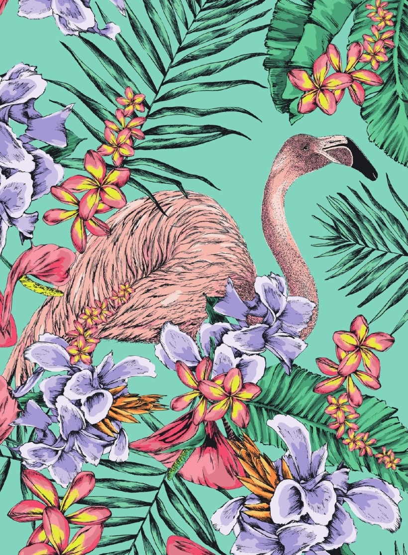 FREE Flamingo Colouring Download