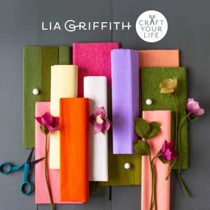 Win one of three Lia Griffith Craft Bundles with Membership